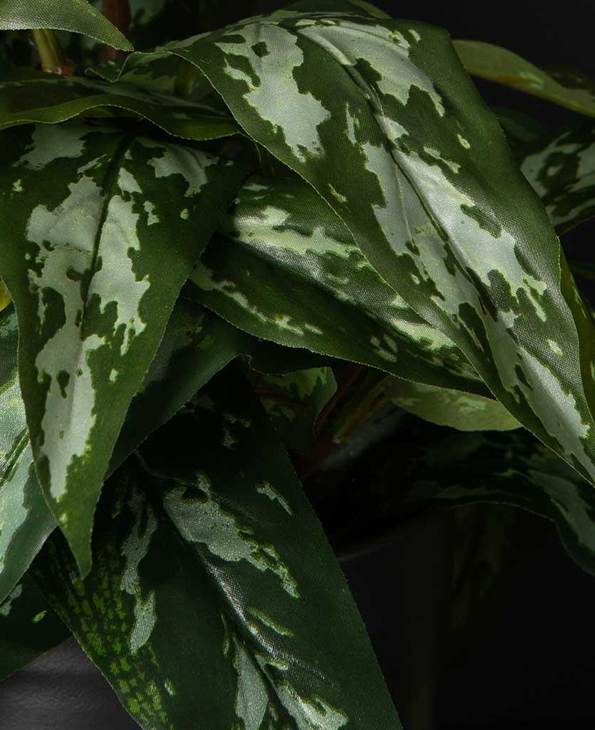 Aglaonema Small Artificial Plant