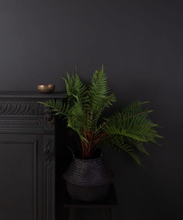 artificial fern in black pot against black wall