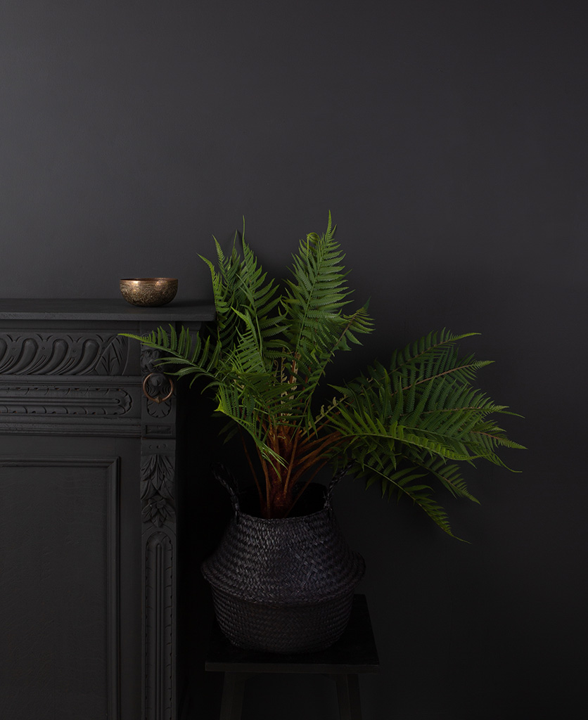 artificial fern in black pot against black wall