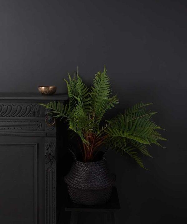 artificial indoor fern plant