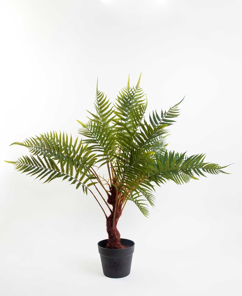 Artificial indoor fern plant