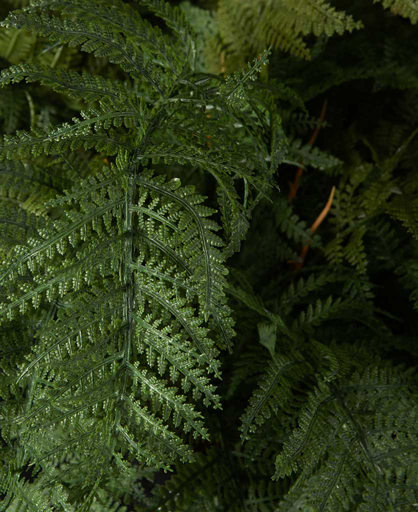 Fern Fake Indoor Plant
