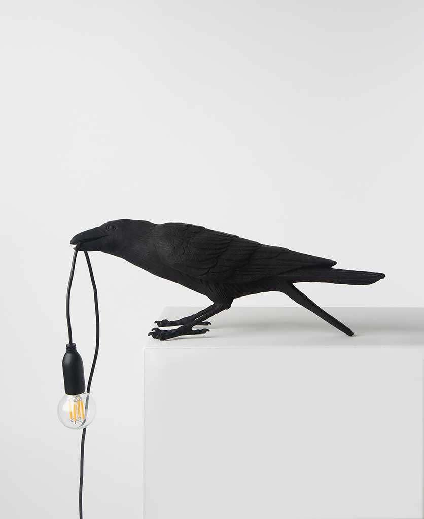 Alfred playing raven bird outdoor light