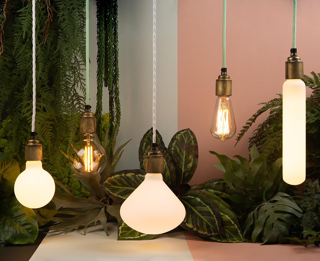 environmentally sustainable led bulbs suspended from lengths of mint green and white fabric cable against white and pink background with foliage