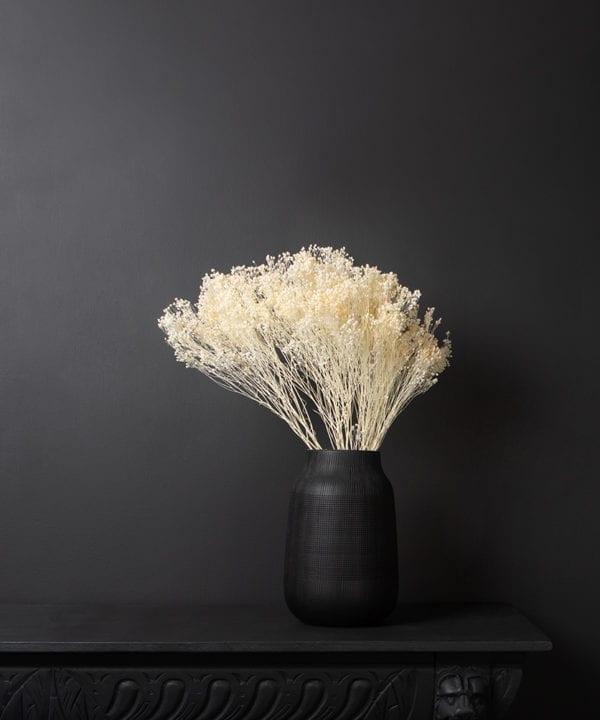 white broom plant bouquet in a black vase against black background