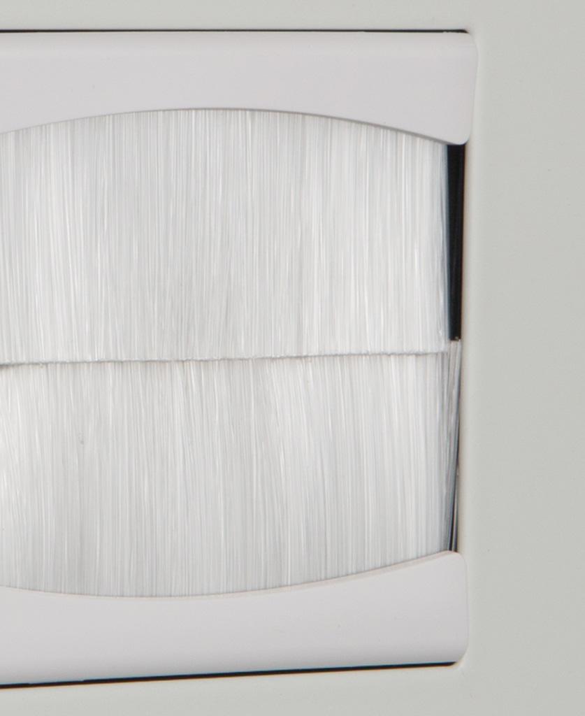closeup white single brush plate
