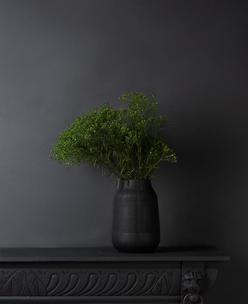 preserved broom flower in a black textured vase against black background