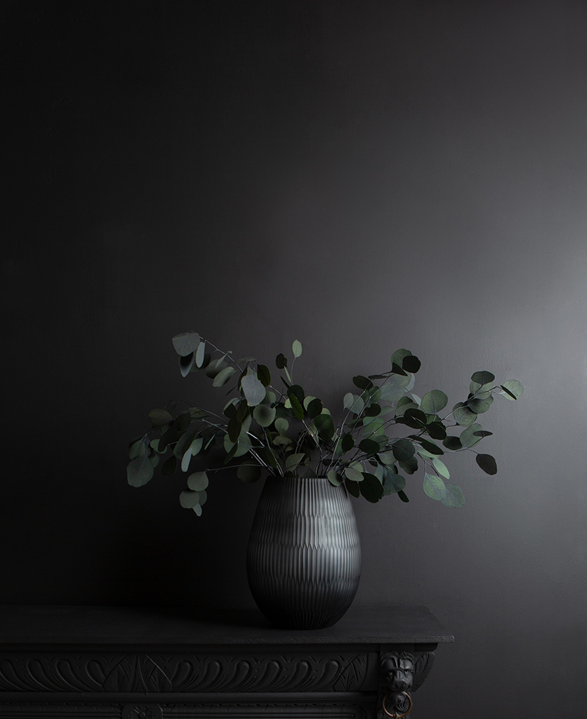 preserved eucalyptus populus in grey vase on black cupboard and background