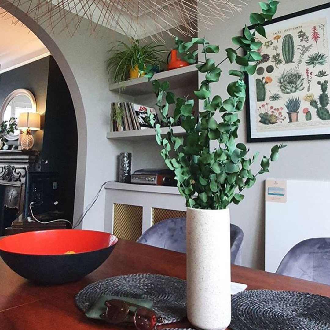 eucalyptus stuartiana in a stone vase sitting on a dining table