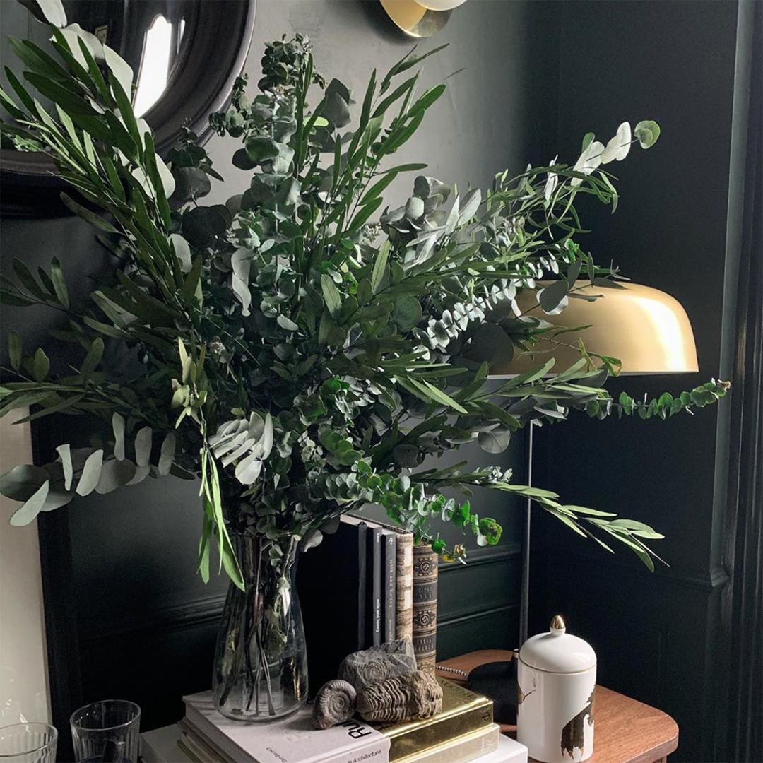 baby blue eucalyptus in glass vase in dark grey space
