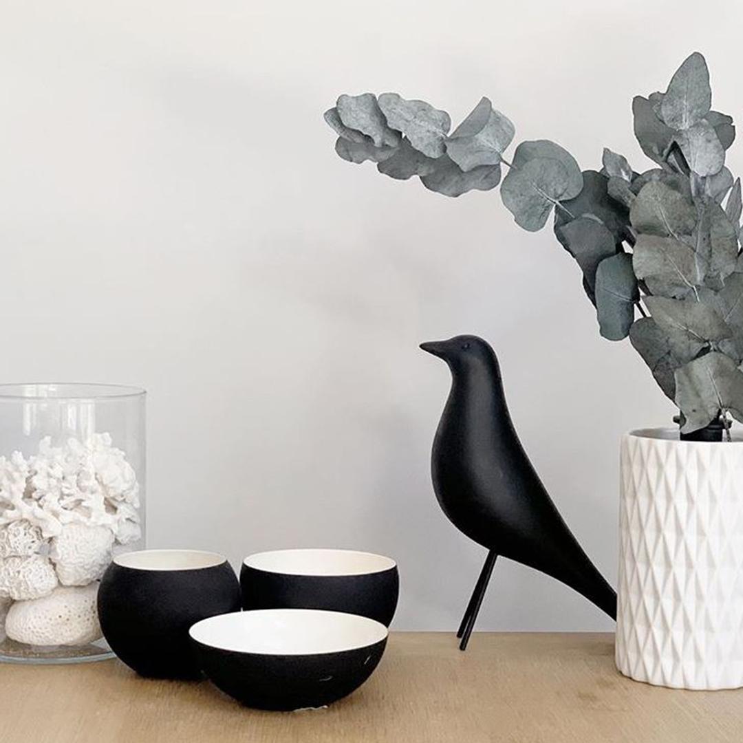 eucalyptus cinerea in a white textured vase in a white interior
