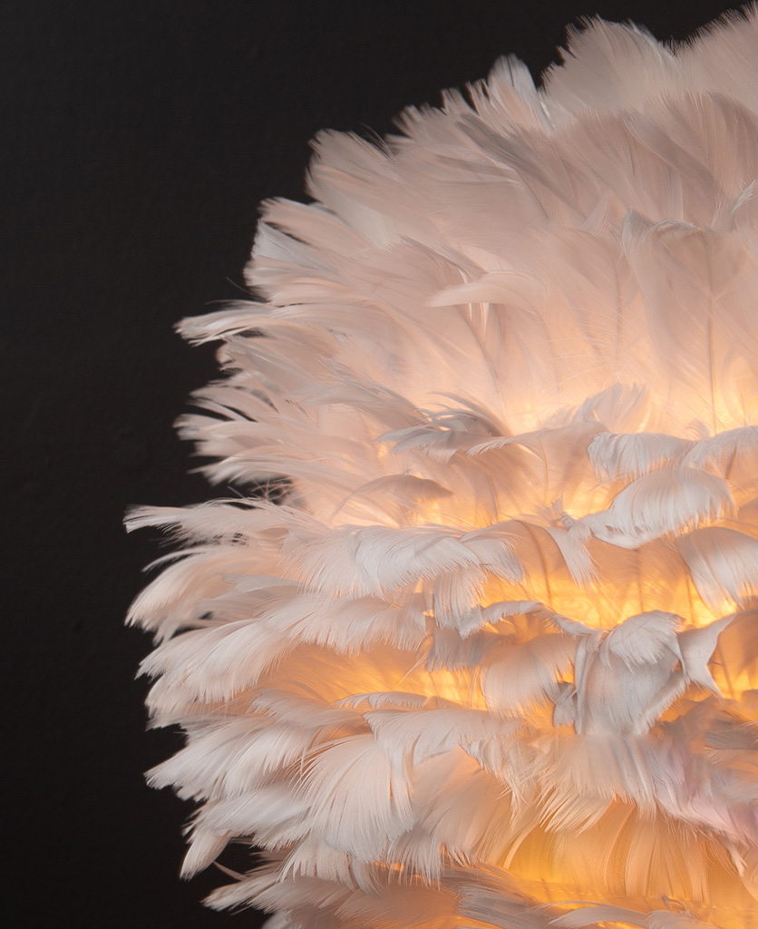 Closeup of grey feather light shade against black background