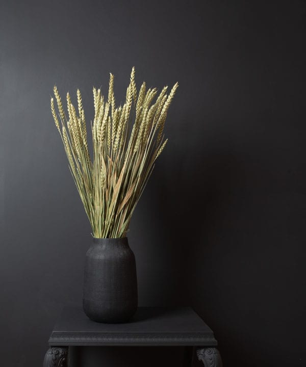 dried wheat bouquet in black vase against black background