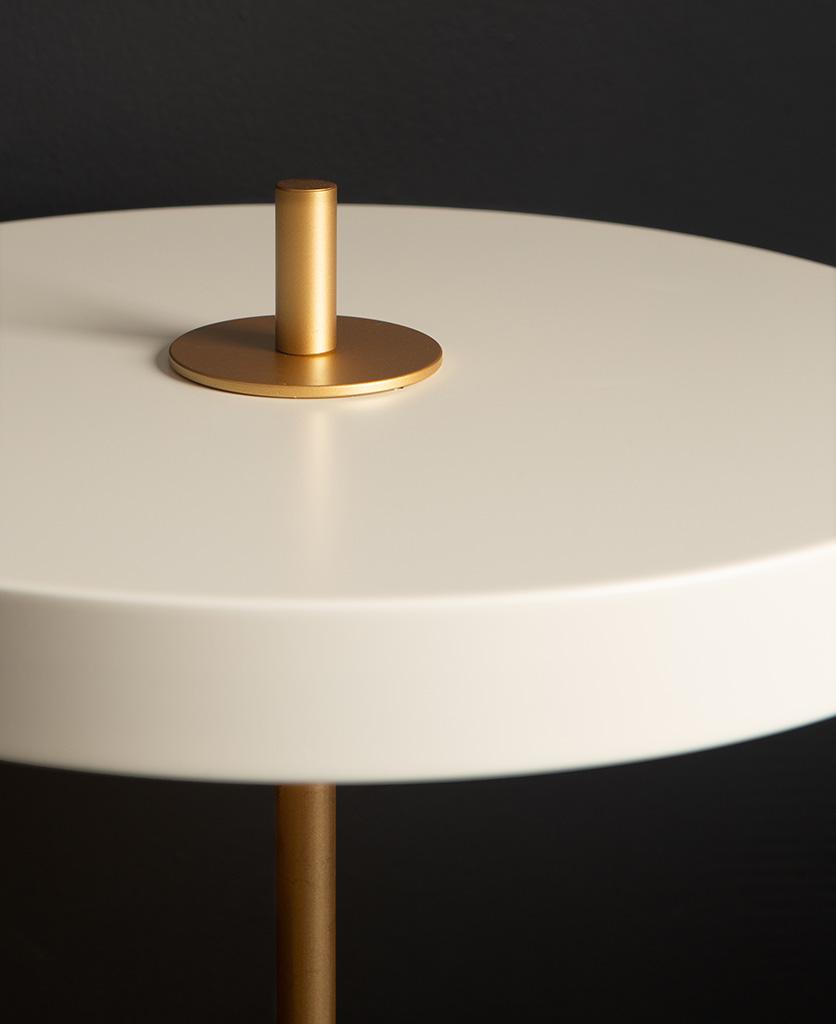 close up image of umage asteria white table light on black background
