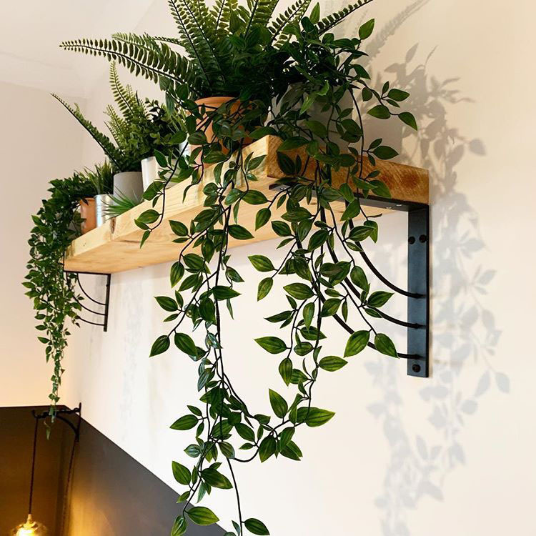 marilyn wooden shelf with faux foliage hanging down from it in a white room