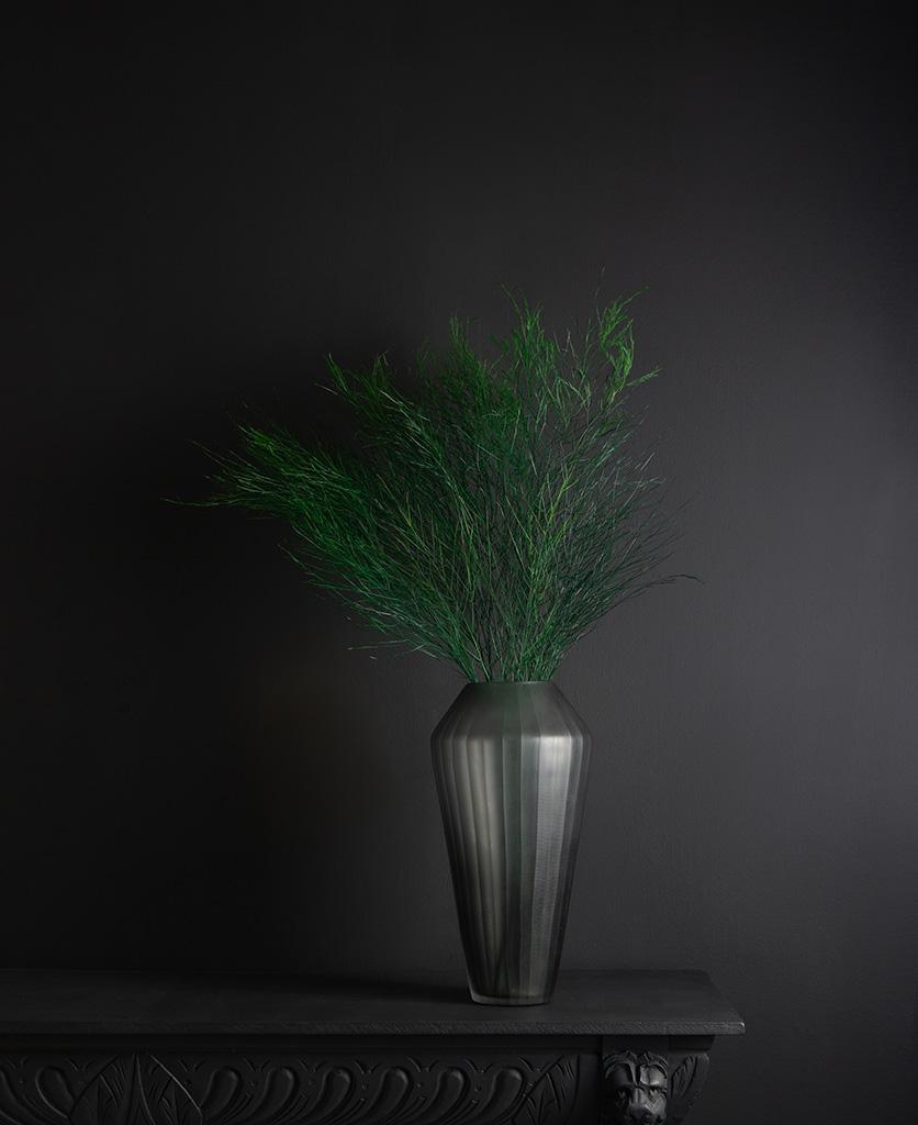 grey vase with asparagus tree fern against black background