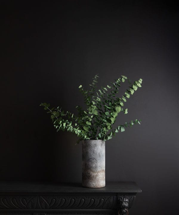 rock effect vase with preserved eucalyptus stuartiana against black background