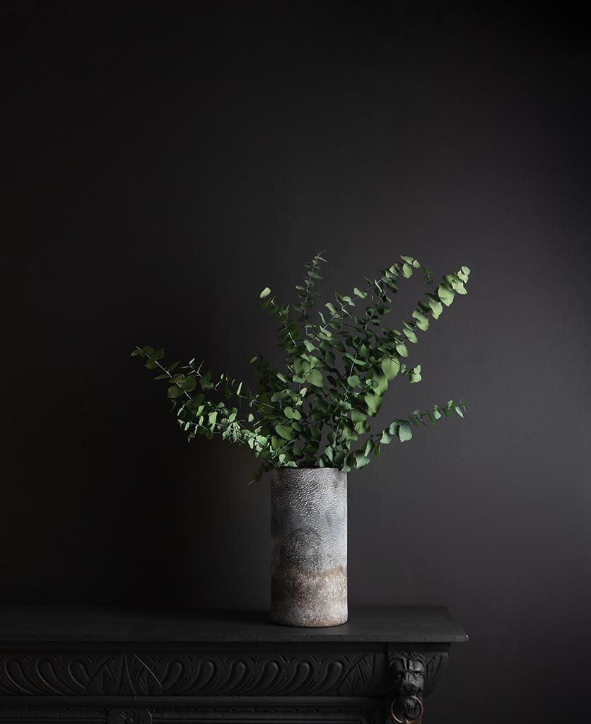 rock effect vase with preserved eucalyptus stuartiana against black background