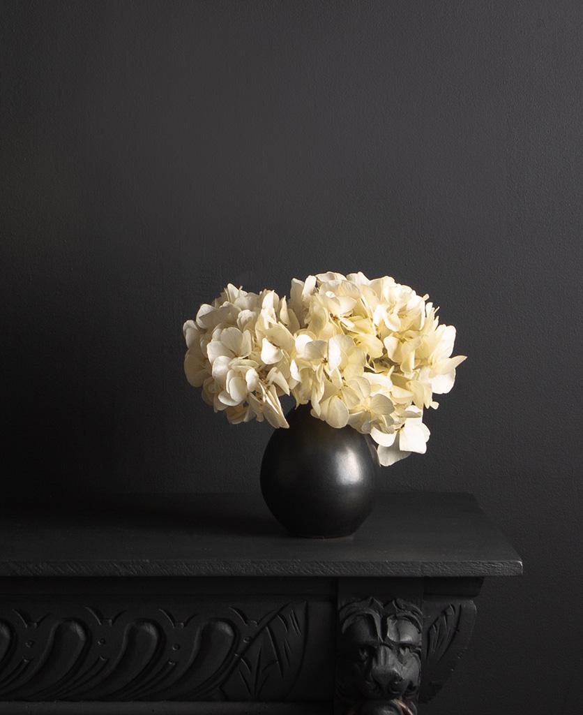 black stem vase with preserved ivory hydrangea stem against black background