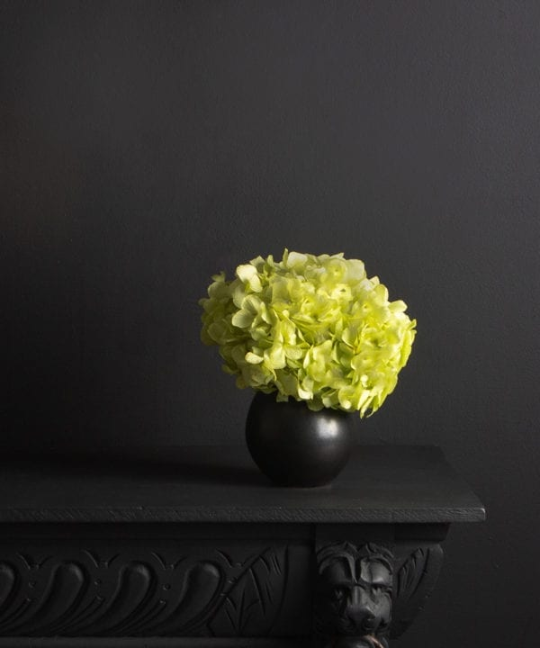 black stem vase with preserved pistachio hydrangea stem on black background