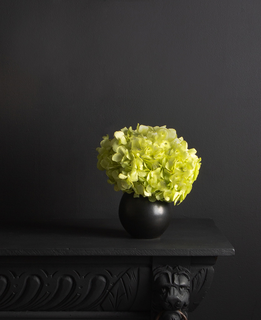 black stem vase with preserved pistachio hydrangea stem against black background