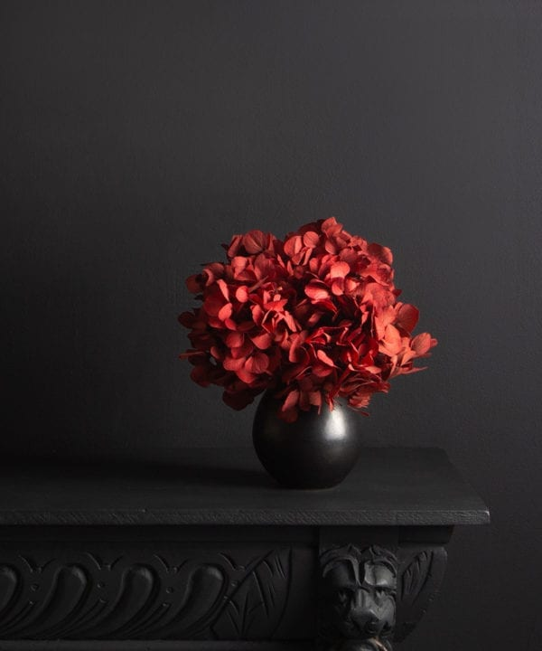 black stem vase with preserved red hydrangea stem against black background