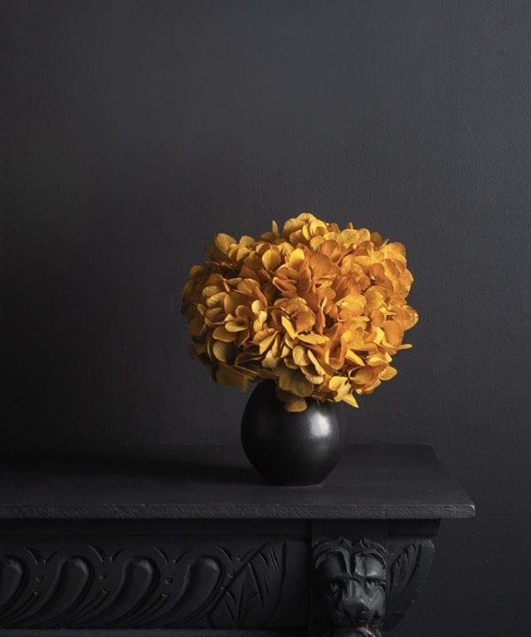 black stem vase with preserved saffron hydrangea stem against black background