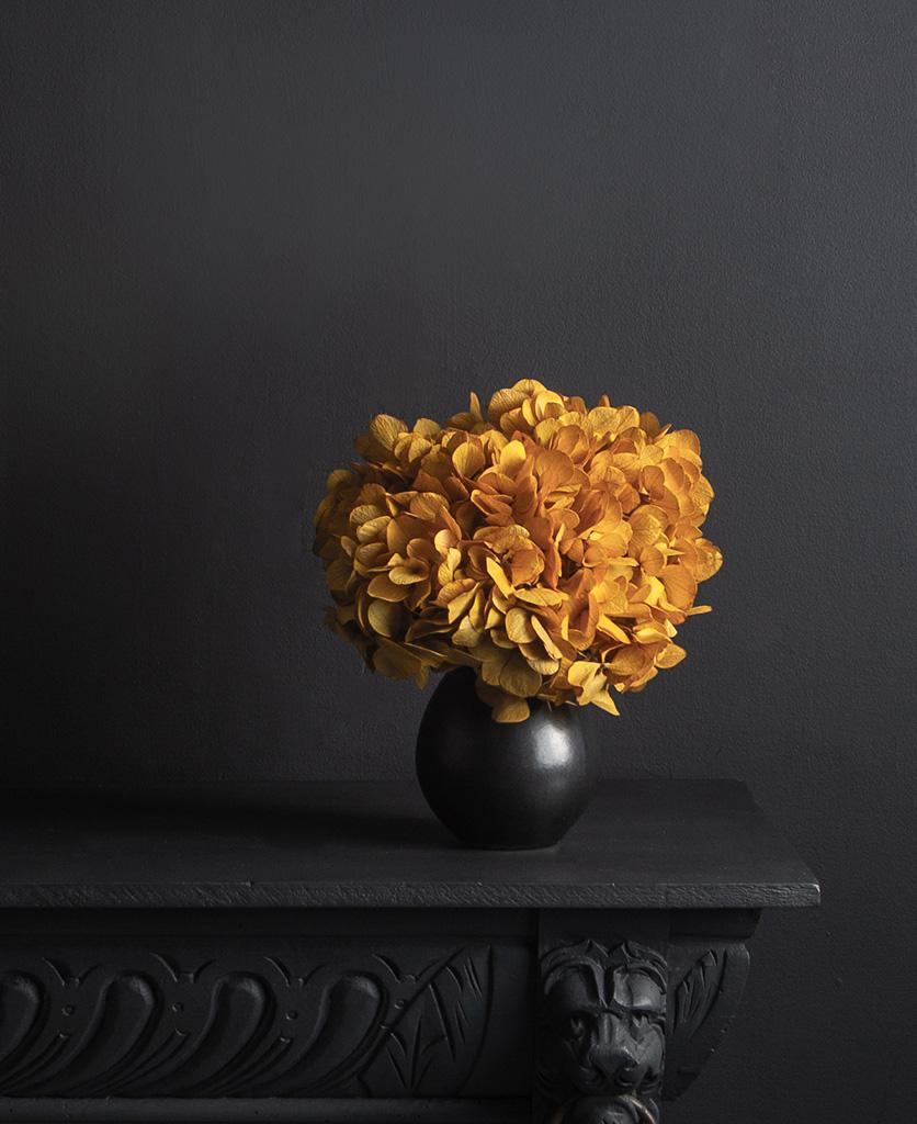 black stem vase with preserved saffron hydrangea stem on black background