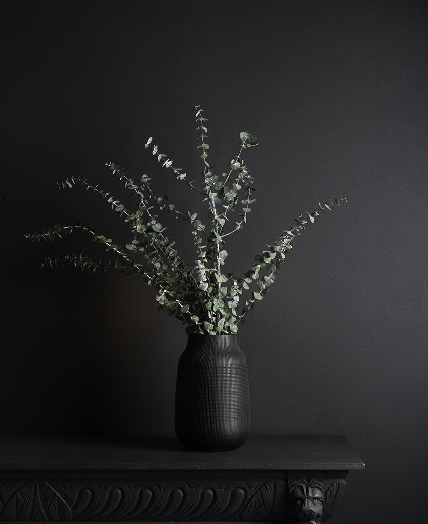 black vase with preserved eucalyptus baby blue bouquet against black background