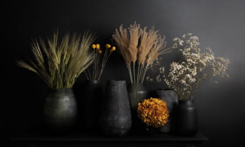 group shot of vases with dried and preserved foliage against black wall