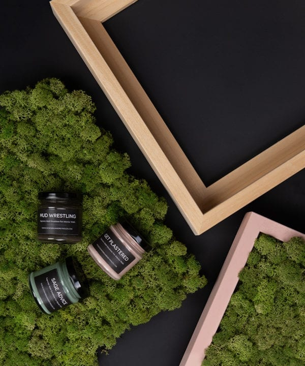 diy living wall framed moss panel components featuring two moss panels, three pots of paint and two wooden frames against black background