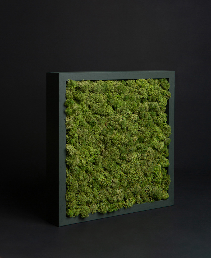 medium green moss panel in dark green wooden frame against black background