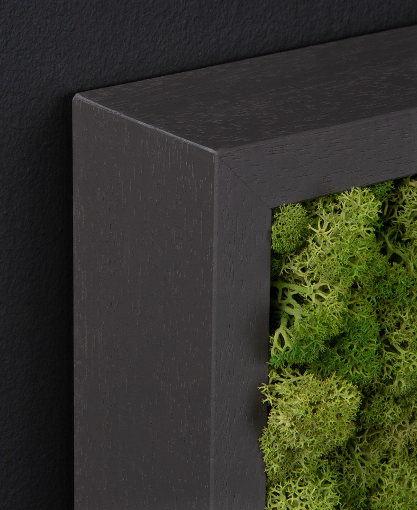 corner of dark grey frame with medium green moss wall panel against black wall