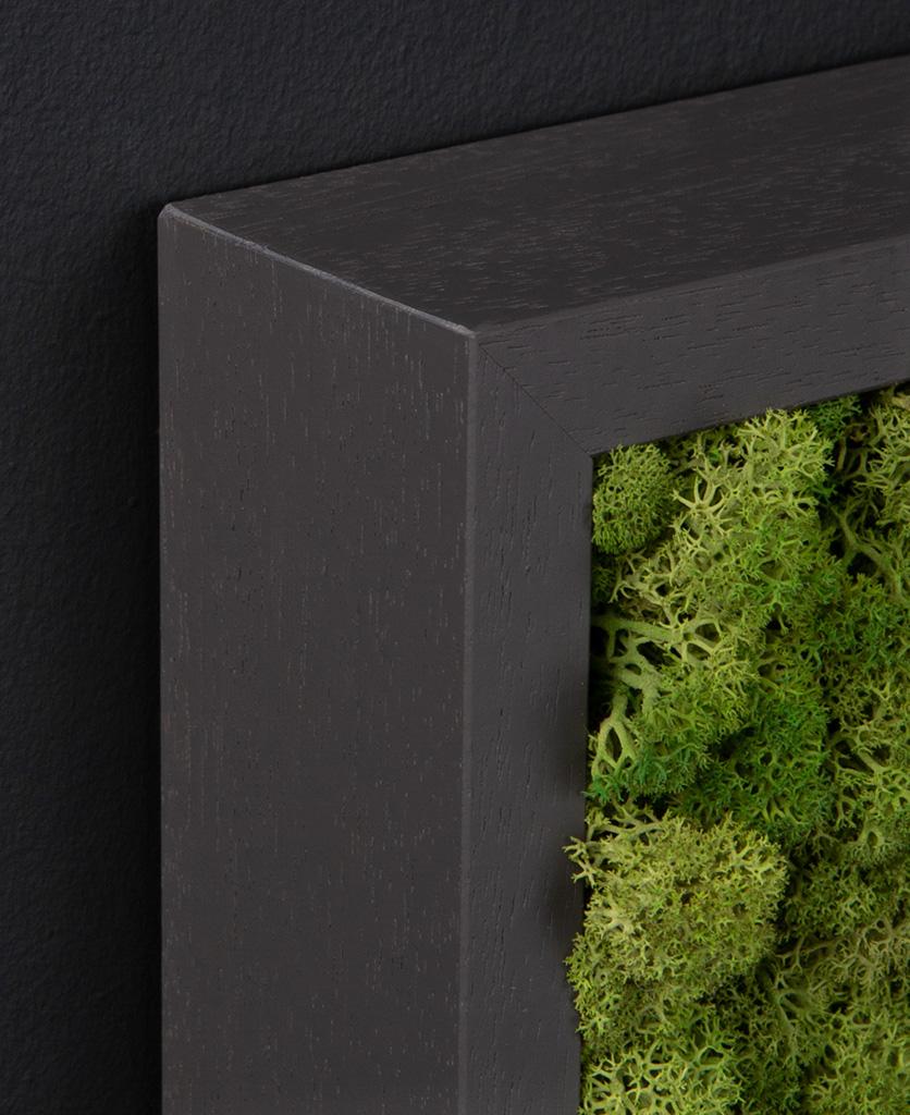 corner of dark grey frame with medium green moss wall panel against black wall