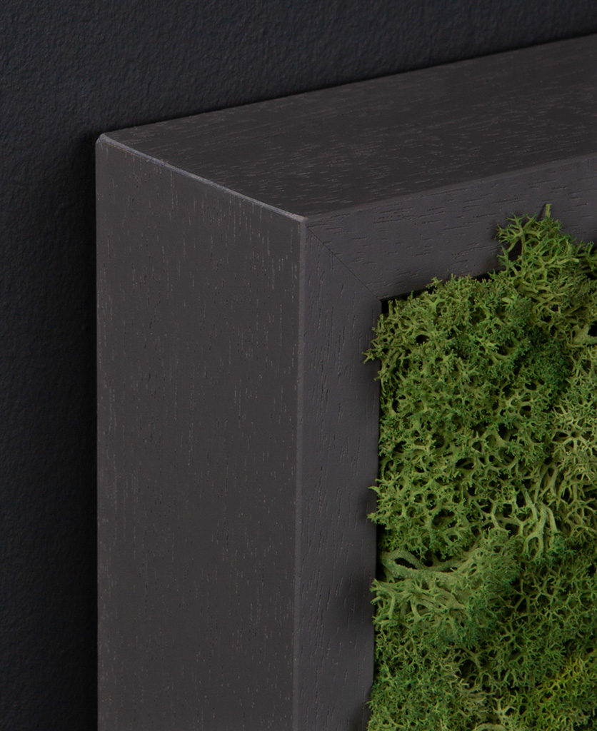 corner of dark grey frame with dark green moss wall panel against black wall