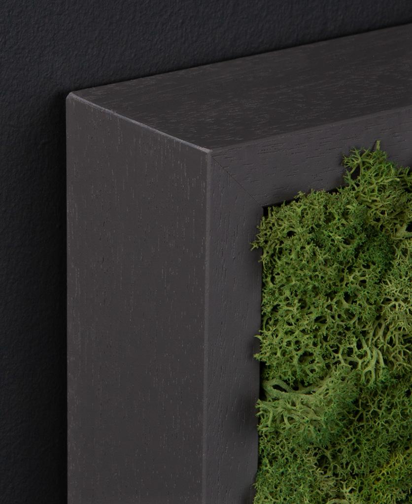 corner of dark grey frame with dark green moss wall panel against black wall