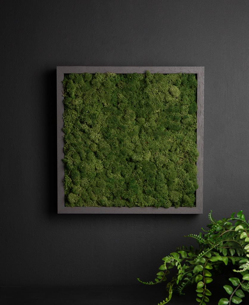 dark green moss panel in dark grey frame on black background