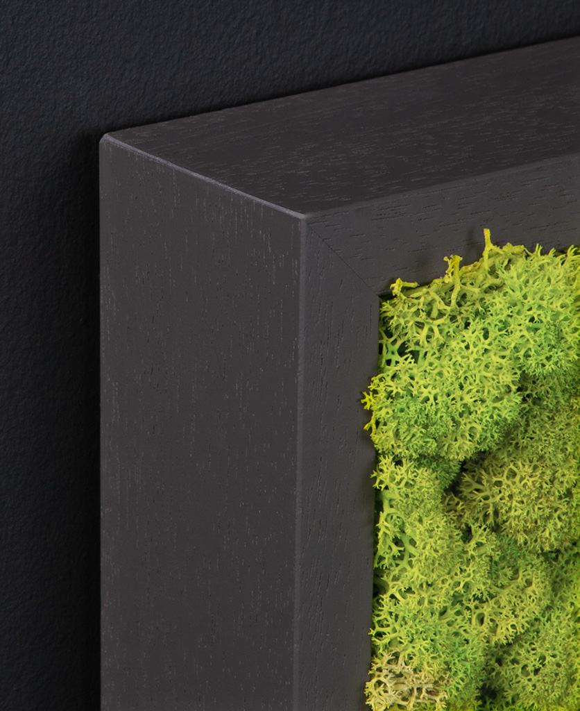 corner of dark grey frame with spring green moss wall panel