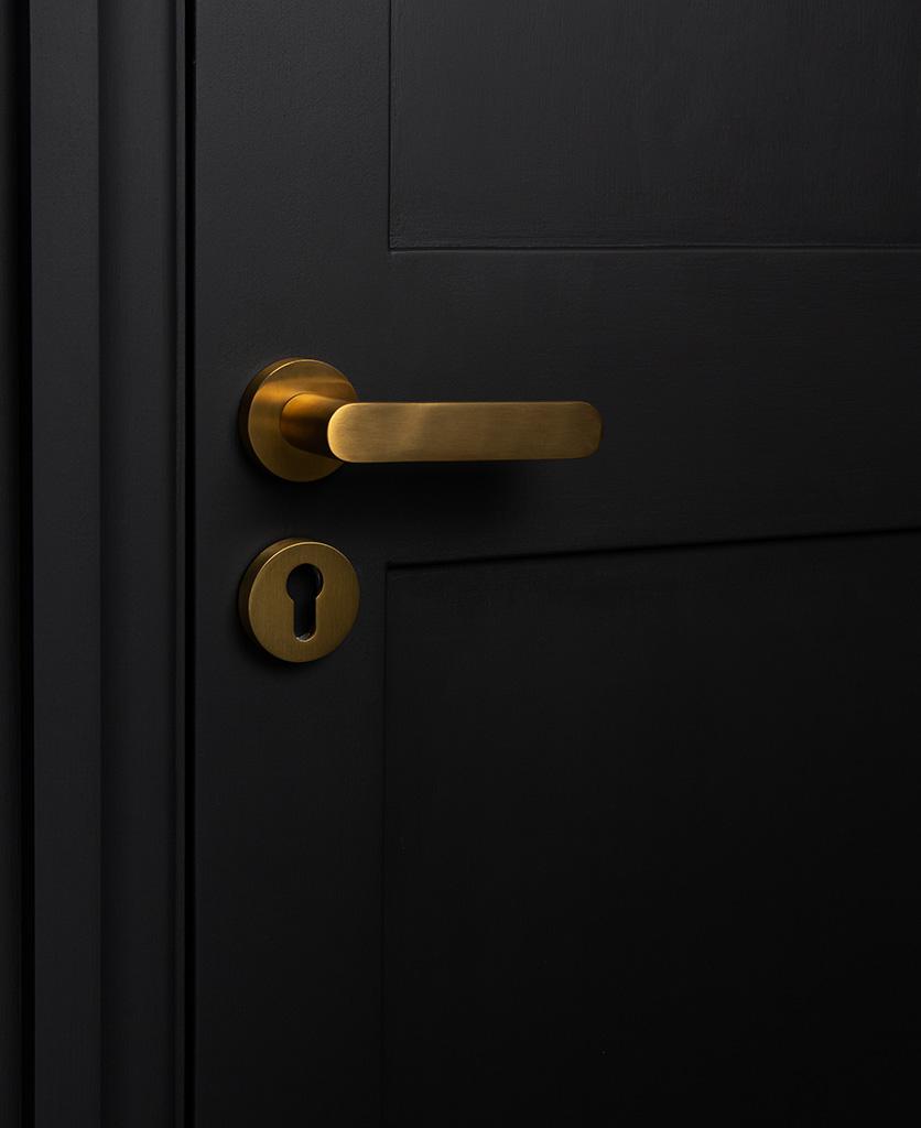 gold interior door handles with escutcheon on black door