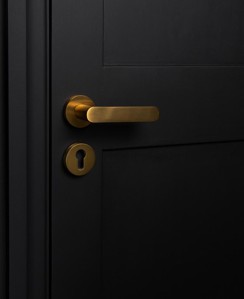 gold interior door handle with escutcheon on black door