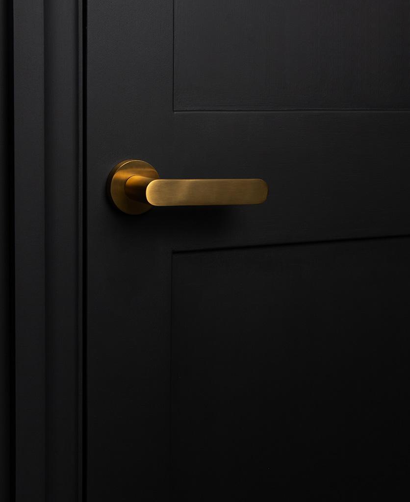 gold interior door handle on black door