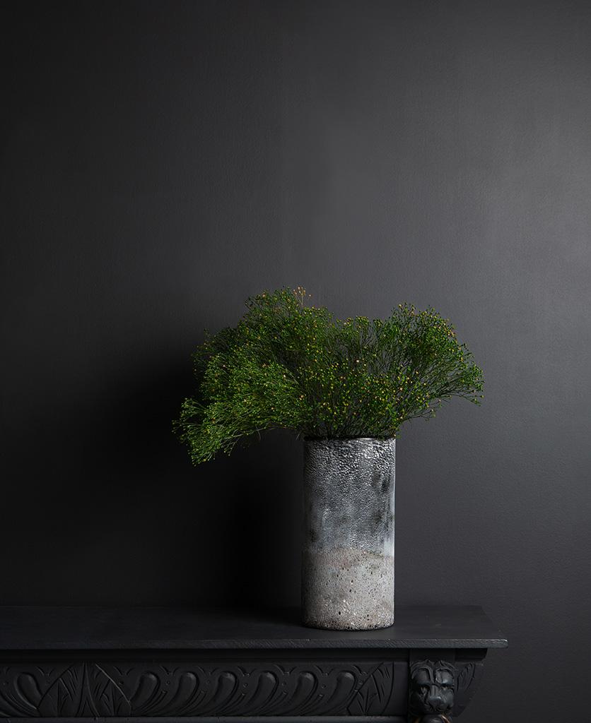 Broom flower with rock effect vase on dark background