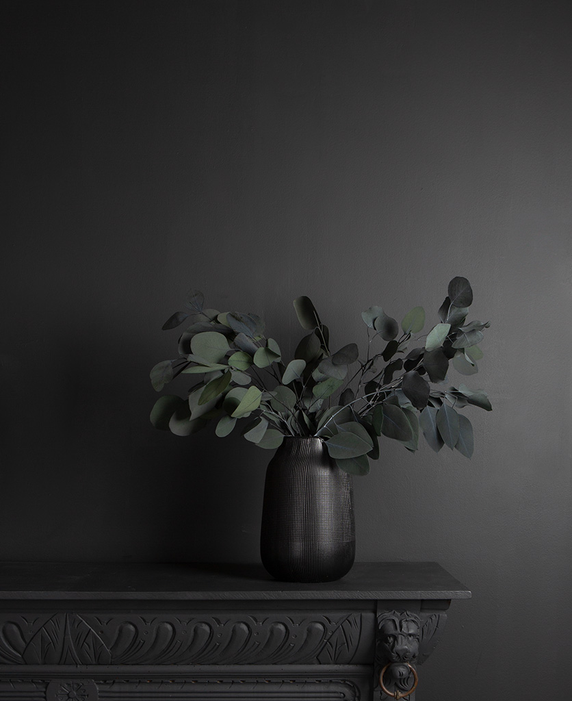 eucalyptus populus in black textured vase on black cabinet against black wall