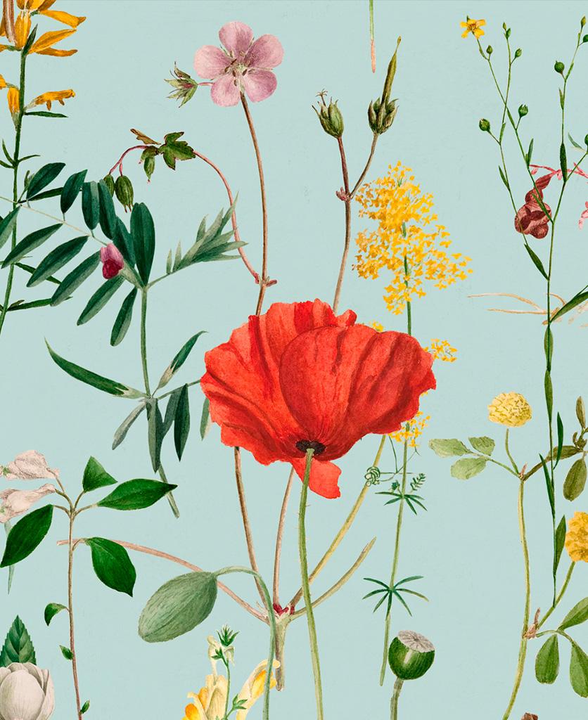 aquafleur aquamarine wallpaper close up