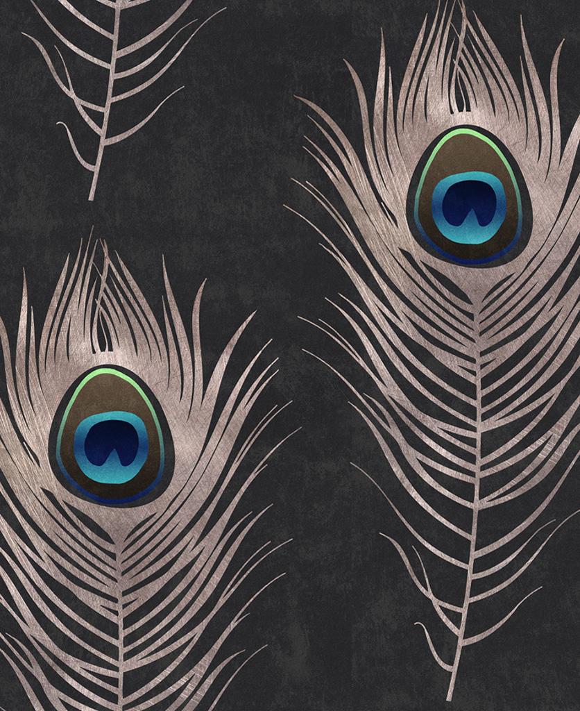 peacock wallpaper close up