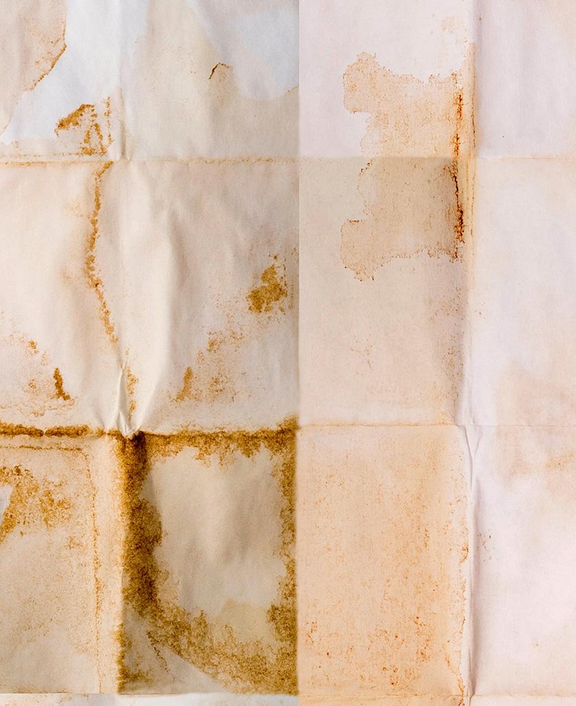shibui wallpaper close up