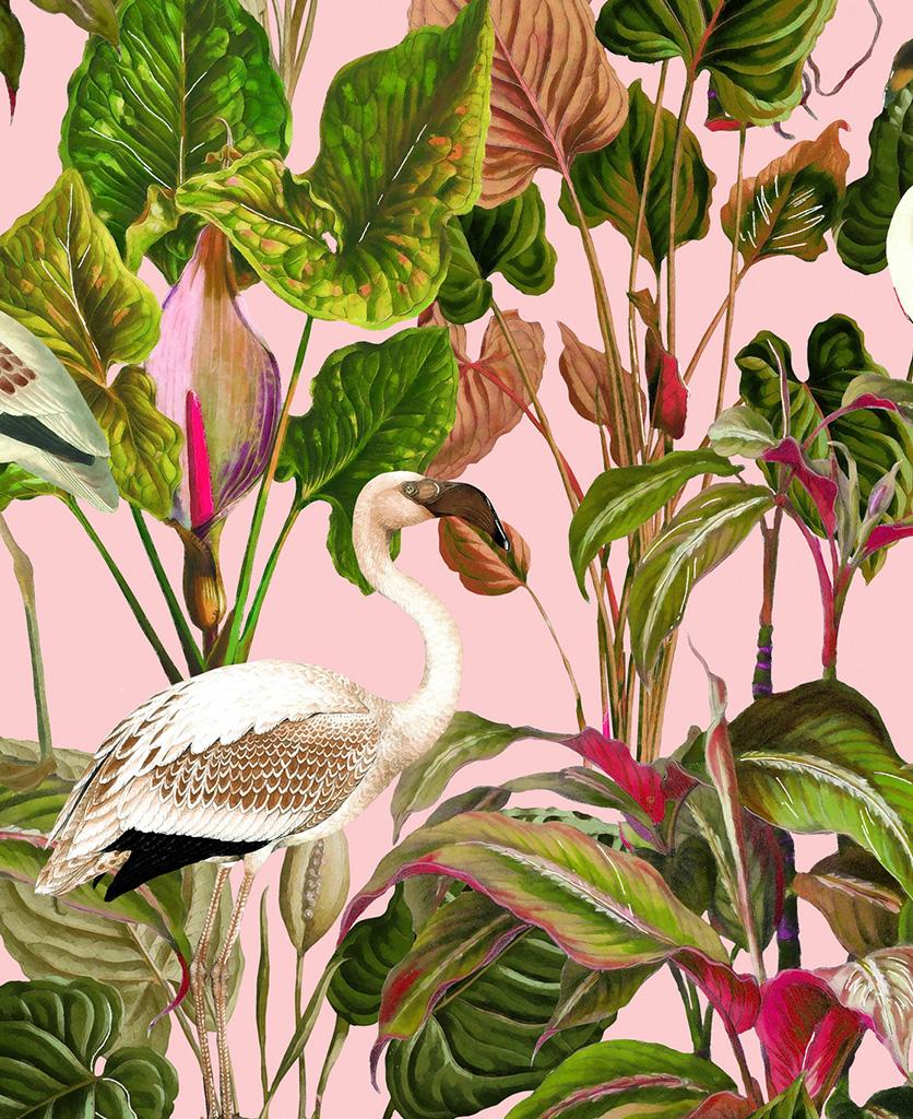 beverly hills pink wallpaper close up