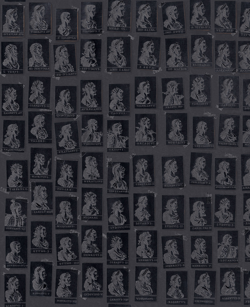 emperors anthracite wallpaper close up