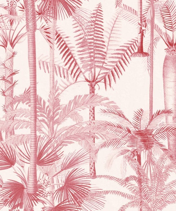 palmera cubana pink wallpaper close up