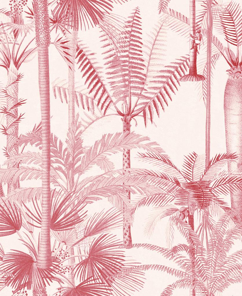 palmera cubana pink wallpaper close up